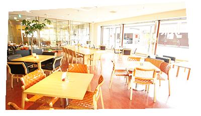 Cafe & tableWare Bene